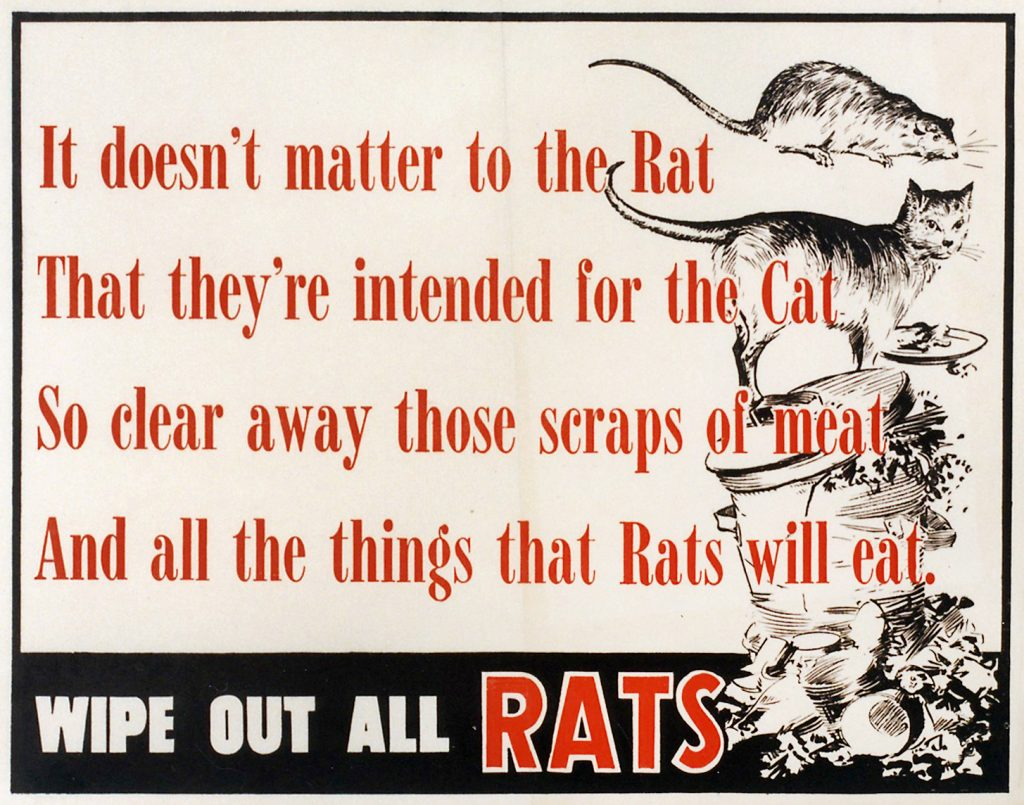 Wipe out all rats